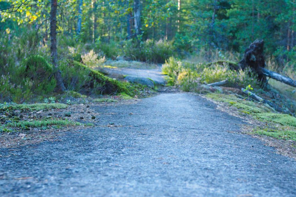 Välillä polkujuoksija pääsee kiitämään kalliiolla Kuva: Terhi Jaakkola