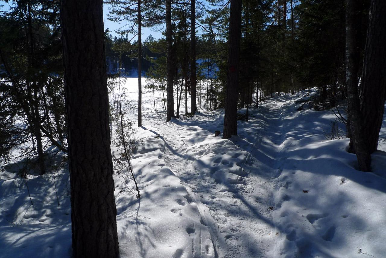 Kisareitillä liikuntaan myös talvella